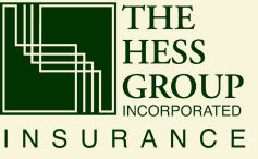 The Hess Group Logo
